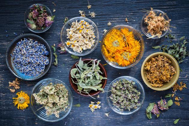 santa hildegarda remedios naturales